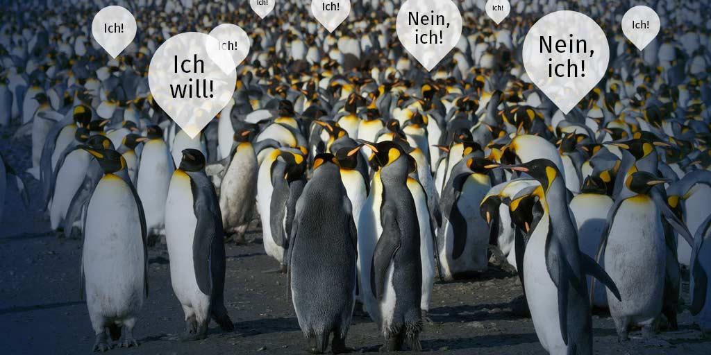 Pinguine in der Ähnlichkeitsfalle / CC BY 2.0 von brian.gratwicke @flickr.com