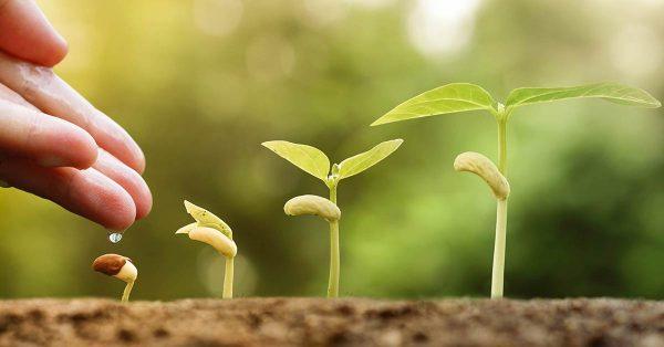 Umweltschutz und Nachhaltigkeit